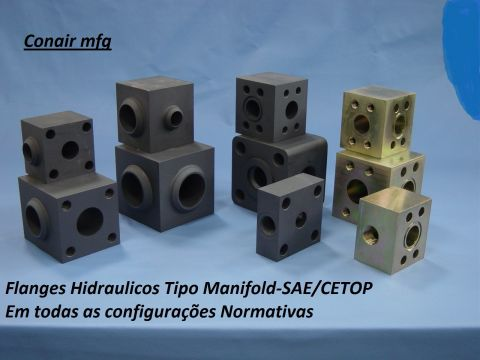 Flanges tipo Manifold